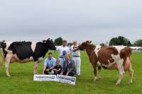 Priestland 5446 Shot J Rose EX93 & Garthland Redwing qualified for Thompsons cow of the year