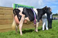 Priestland 5446 Shot J Rose EX93