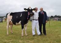 Priestland 5566 Goldwyn Betty VG89 - Holstein Champion @ Co. Londonderry Show 2016