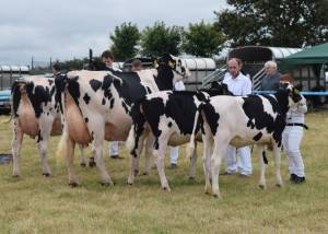 County Londonderry Show 2018