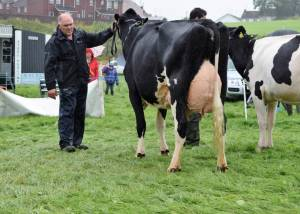 Fermanagh County Show 2017